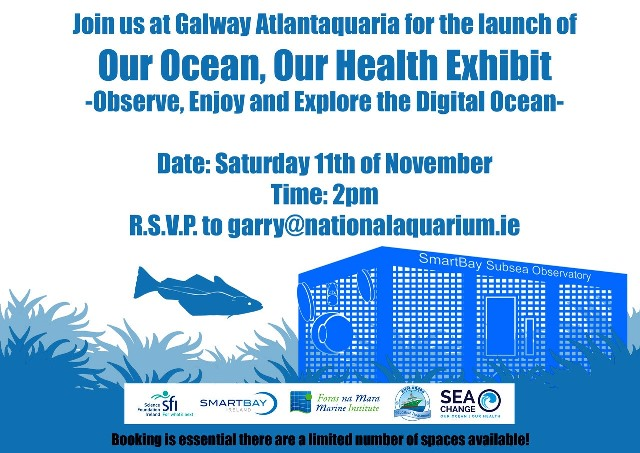 Galway Atlantaquaria Our Ocean Poster