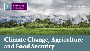 Climate & Food Security Borchure