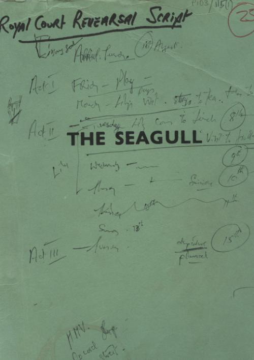 Thomas Kilroy's _The Seagull_
