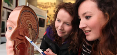 NUI Galway Neuroscientists Participate in Brain Awareness Week -image