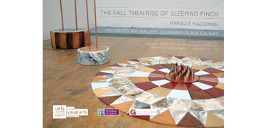 Museum Art Exhibition at NUI Galway -image
