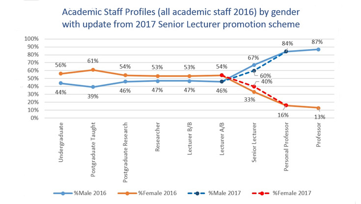 Academic Staff Profiles (all academic staff 2016) by gender with update from 2017 Senior Lecturer promotion scheme. Image: NUI Galway
