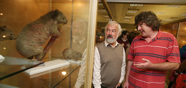 Children's Open Day at Zoology Museum in NUI Galway-image