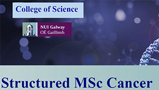 Structured MSc Cancer Research