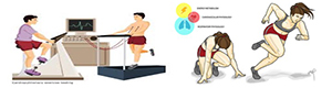 Exercise Physiology Graphic 1