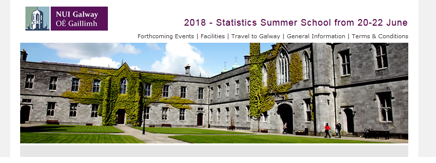 The 5th Annual Statistical Summer School-image