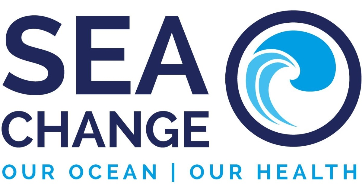 Collective Intelligence: An Innovative Research Approach to Promoting Ocean Literacies in Ireland-image