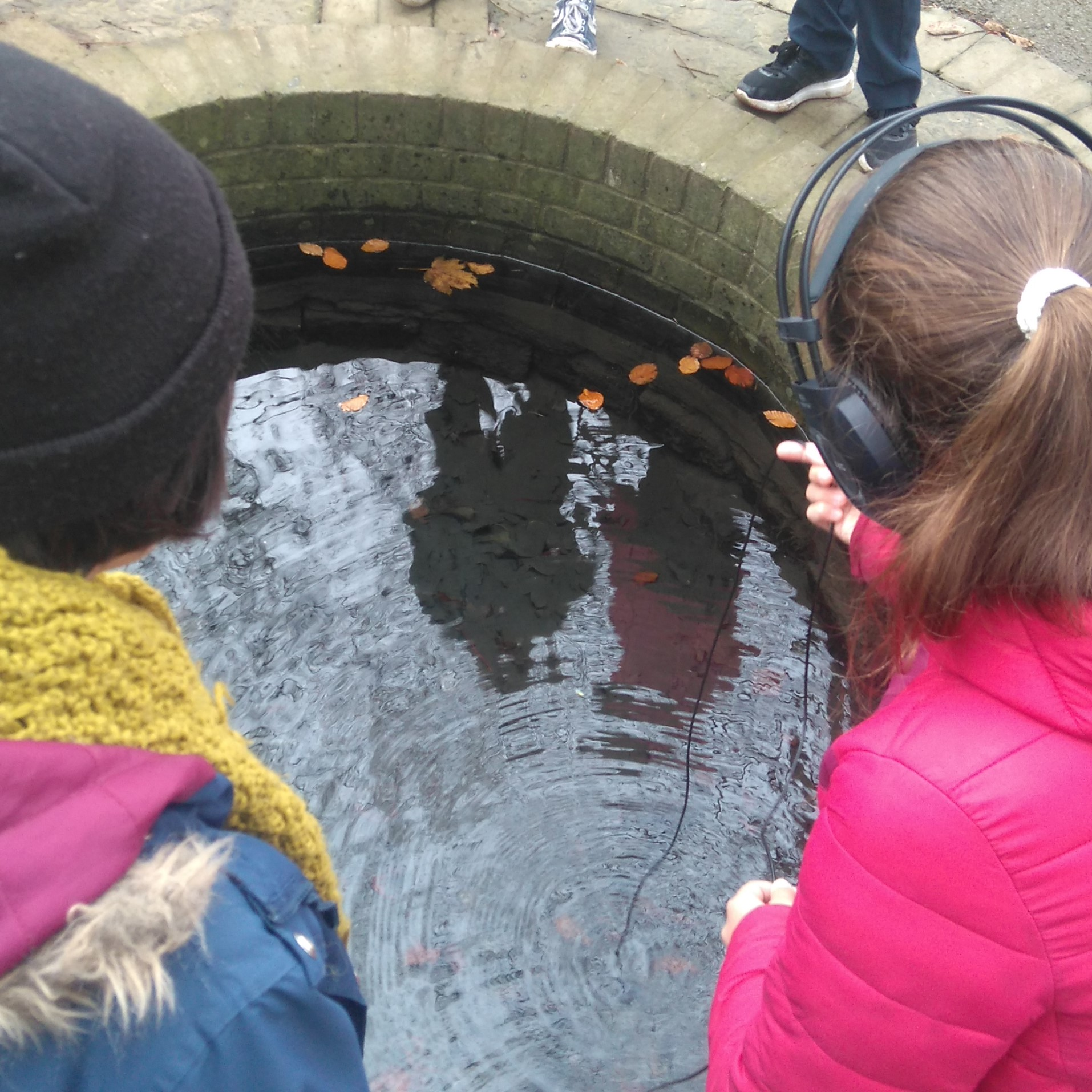 Series Exploring Holy Wells with Primary Schools and Heritage Groups-image