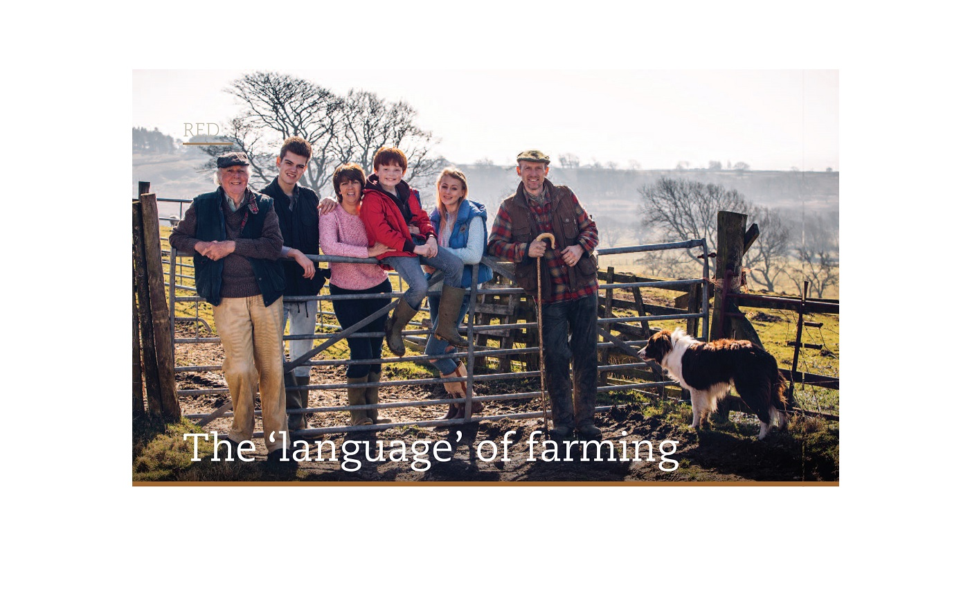 Research by the Rural Studies Research Cluster featured in Teagasc Publication-image