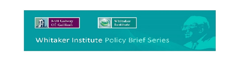 New Whitaker Institute Policy Brief-image
