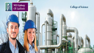 Occupational and Environmental Health & Safety
