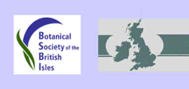 NUI Galway Hosts Botanical Society of the British Isles Annual Meeting -image
