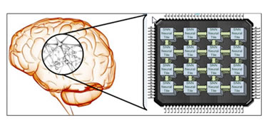 Researchers Mimic Nature to Create a 'Bio-Inspired Brain' for Robots-image