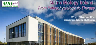 NUI Galway Host First Matrix Biology Ireland Meeting-image