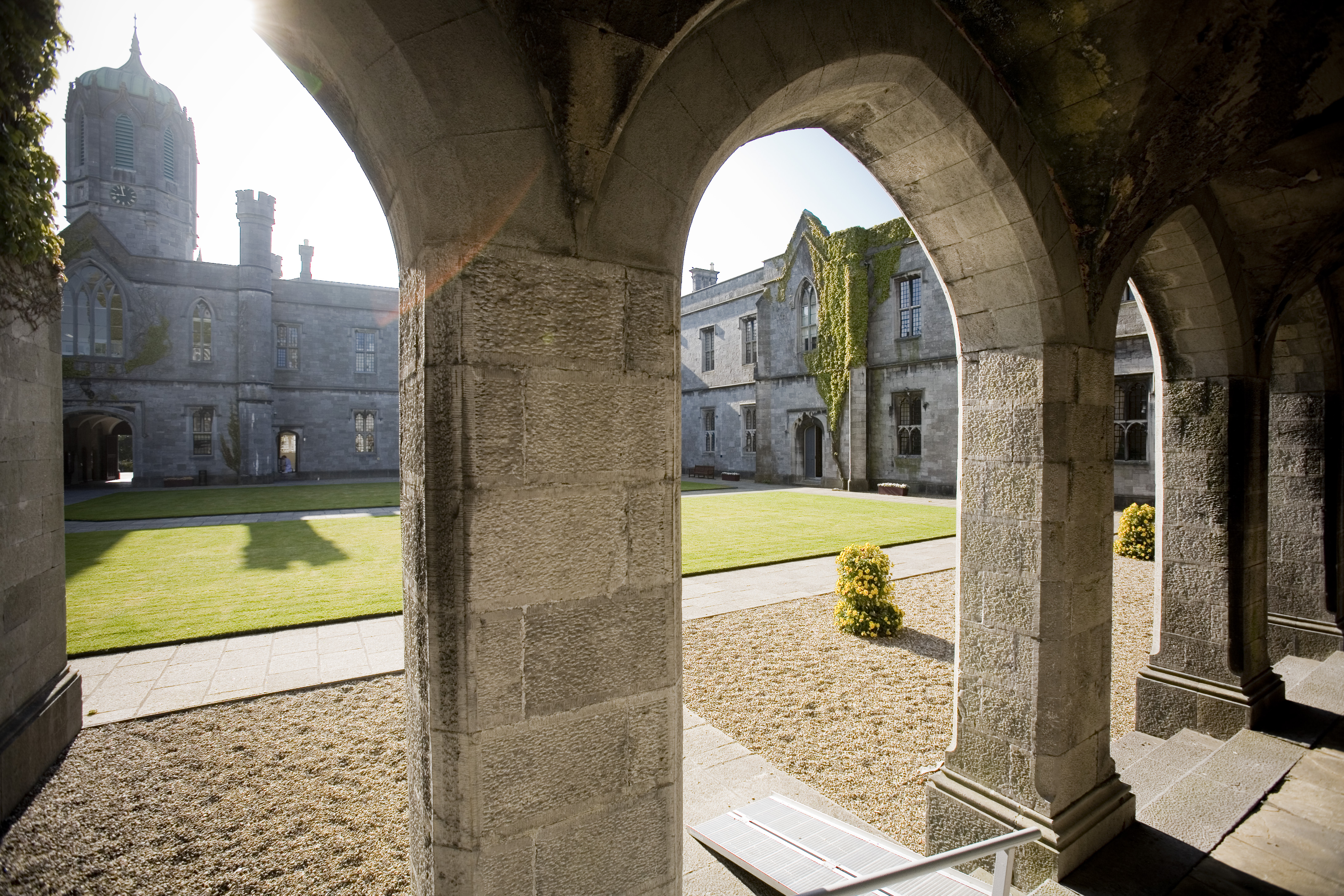 NUI Galway Announces Scholarship Scheme for Unemployed and Low Income Groups-image