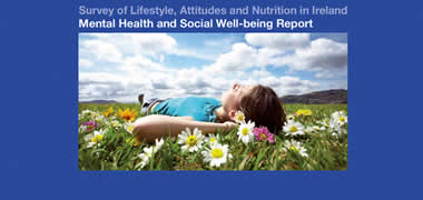 Minister Wallace Publishes Mental Health and Social Well-being of the Irish Popu-image