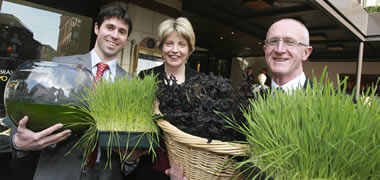 NUI Galway to host Competence Centre for Bioenergy and Biorefinery-image