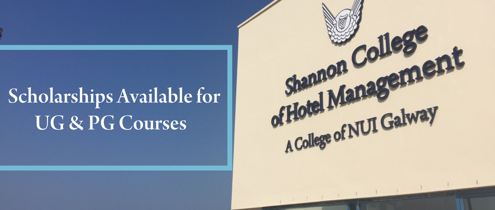 Shannon College Scholarships